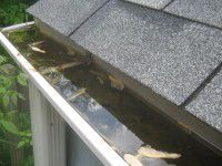 gutter-obstructed