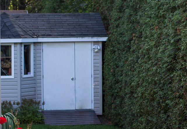 Shed-garage
