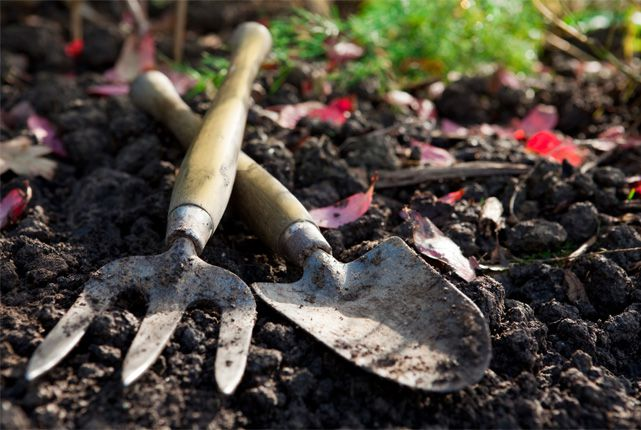 Caring for your garden tools in 3 easy steps for Garden maintenance tools