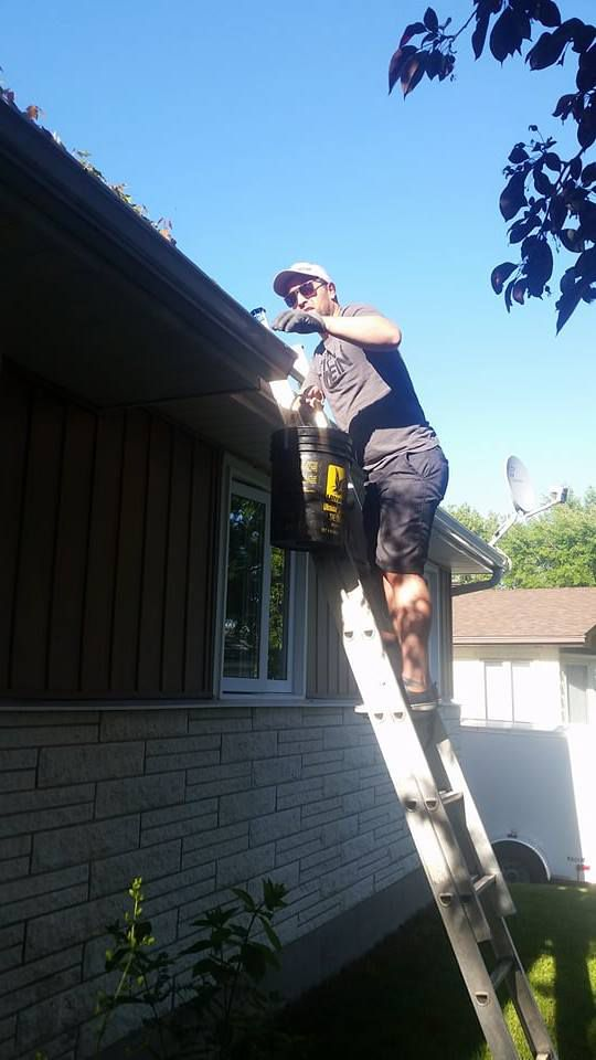 <i>Climb on your ladder and clean your gutter. Then, install a gutter protection.</i>